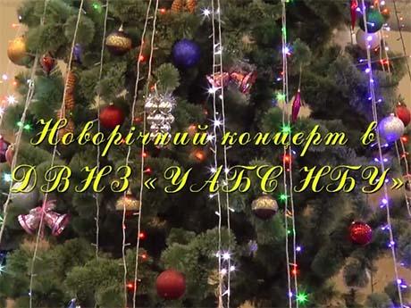 Новорічний концерт (25.12.2014)